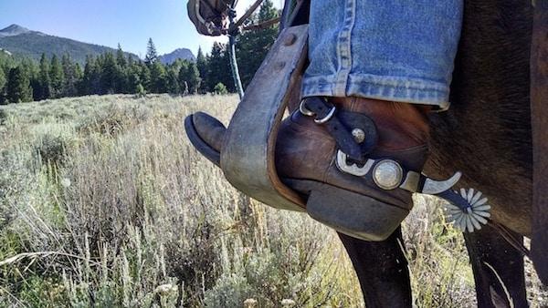 Cowboy Stiefel